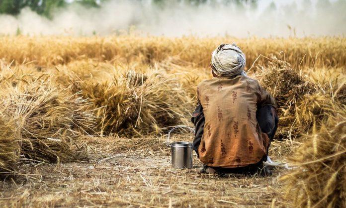 Migranti Agricoltura