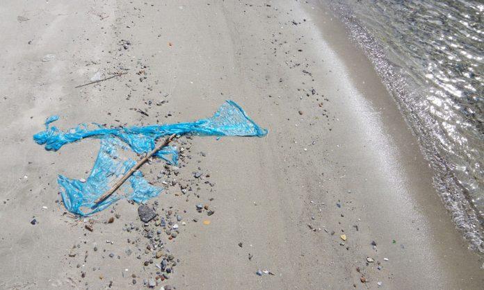 Plastica in spiaggia Fratelli d'Italia