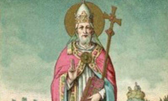 Papa Leone IX - Super Sud: un tuffo nella storia