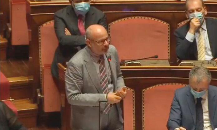 Il senatore Andrea De Beltoldi in aula