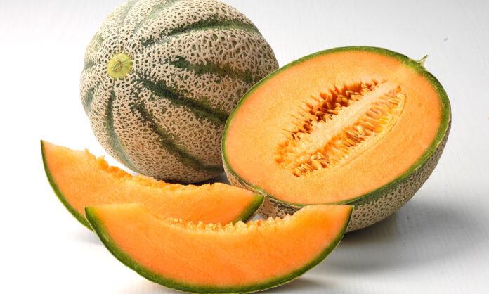 Il melone, un dissetante frutto estivo
